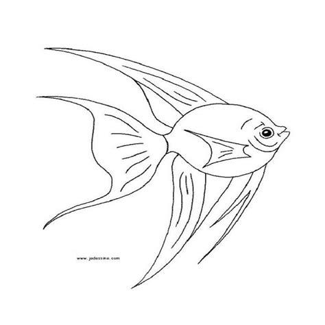 dibujos realistas para colorear dibujos de peces a color para imprimir