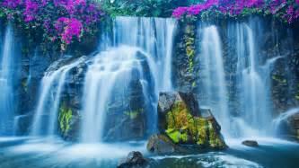 beautiful waterfalls with flowers beautiful waterfalls wallpaper
