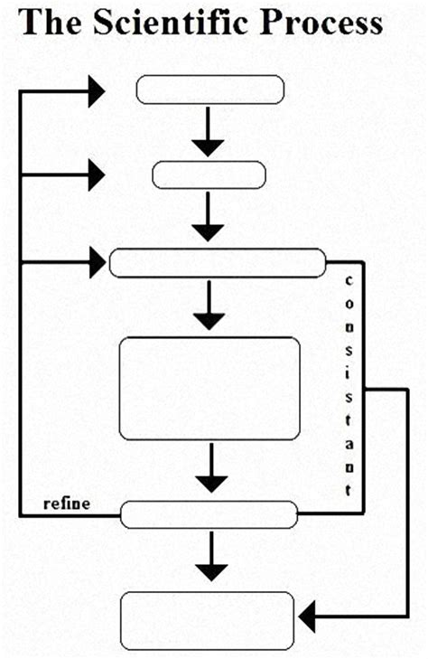 blank scientific method flow chart sketch coloring page