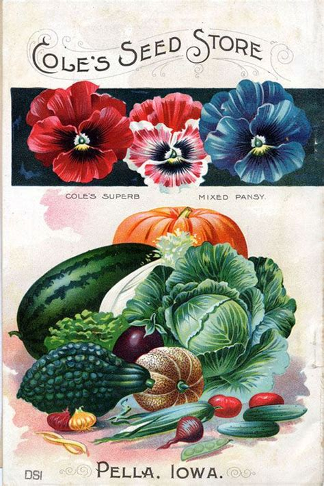 Garden Plants Catalogs by 39 Best Vintage Seed Packets And Catalogues Images On