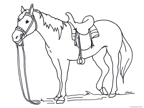 advanced coloring books for sale free coloring page within simple pages printable