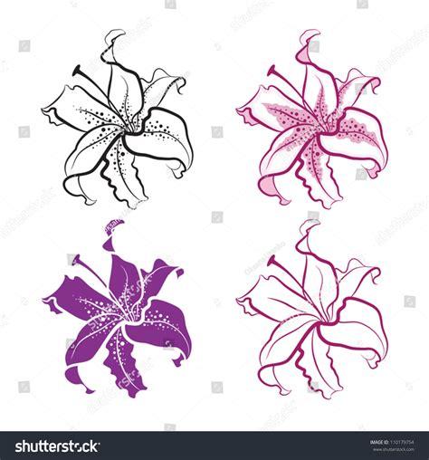 cattleya flower tattoo eletragesi cattleya orchid images