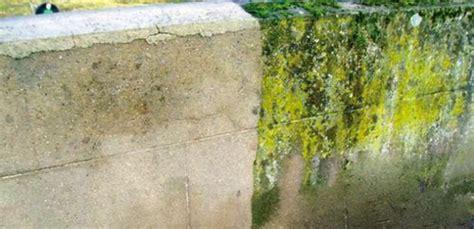 Se Débarrasser De La Mousse Sur Une Terrasse 2192 by Comment Nettoyer Des Murs Fa 231 Ades Et Terrasses R 233 224
