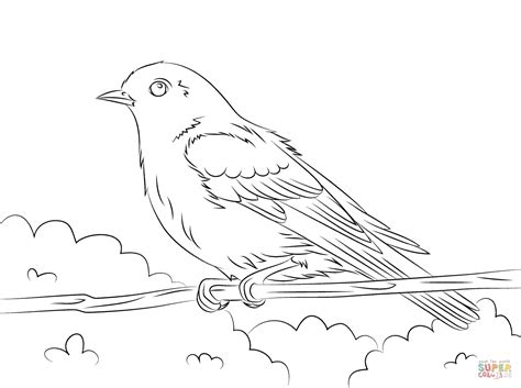 eastern bluebird coloring page free printable coloring pages