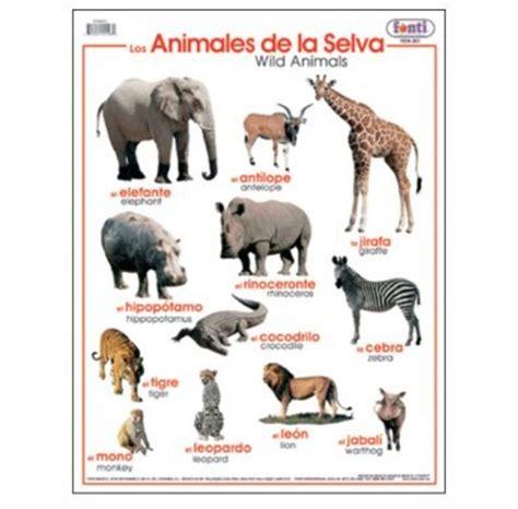 imagenes de animales jungla poster animales de la selva