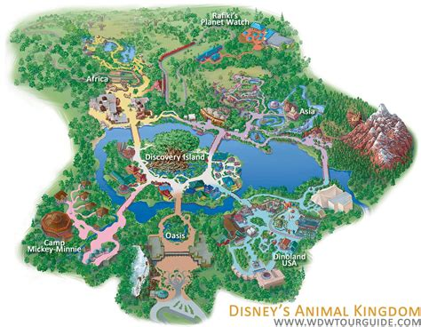map of animal kingdom wdw animal kingdom images photos pictures bloguez