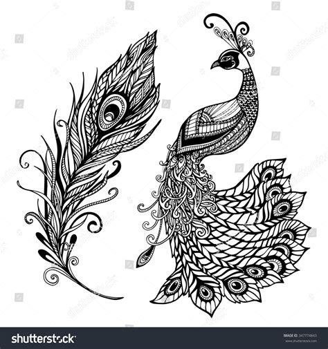 coloring book 33 illustrated drawings of beautiful using patterns swirls flowers and leaves printed on black paper relaxing coloring book for volume 1 books decorative stylized peacock bird feather stock vector