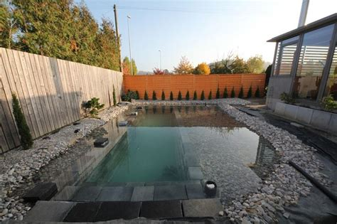 backyard swimming ponds this one reddit user decided to build a swimming pond