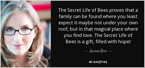 the secret of bees book report essay about the secret of bees