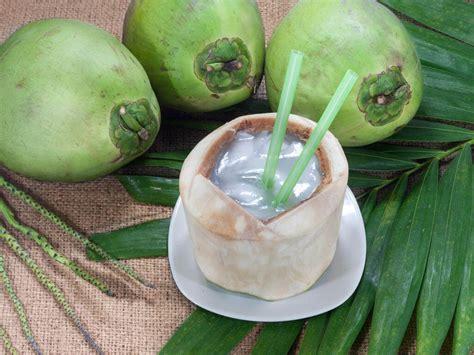 anti acne alami  air kelapa