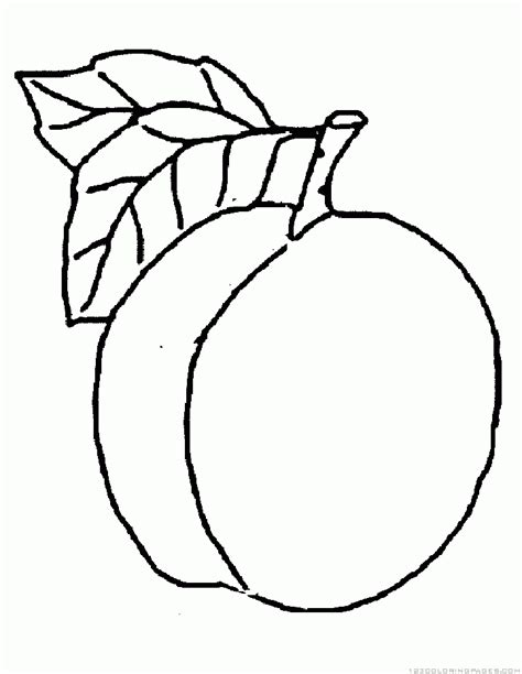 peach coloring pages printable coloring pages