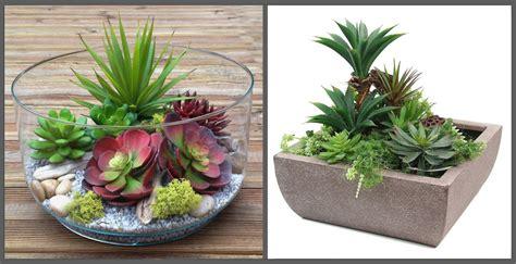 composizioni di piante grasse in vasi di vetro piante grasse nel vetro idee per il design della casa