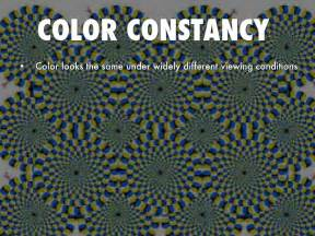 color constancy psychology psychology by juliet bowling