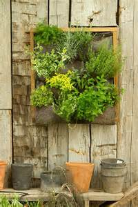 a wonderful vertical garden content in a cottage