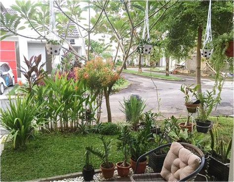 desain taman rumah minimalis mungil lahan sempit terbaru dekor rumah