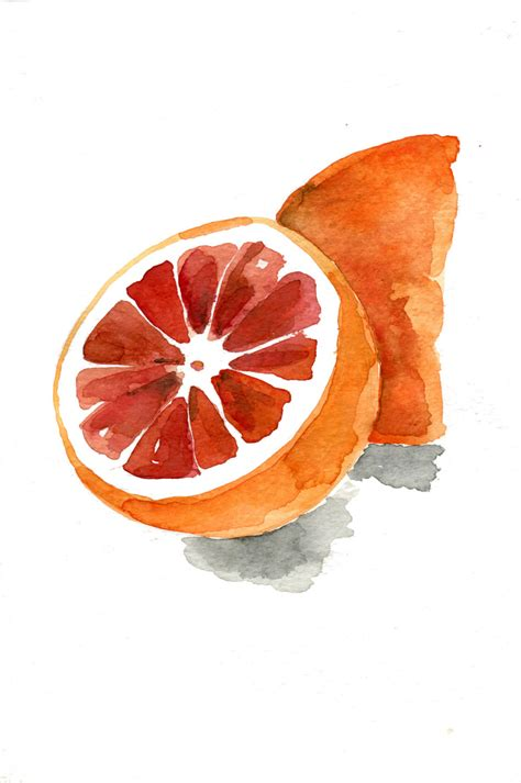 blood orange no 2 print watercolor painting by thejoyofcolor