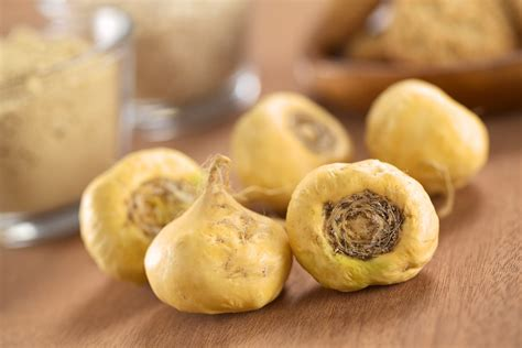 best maca the top benefits of maca 171 snyder