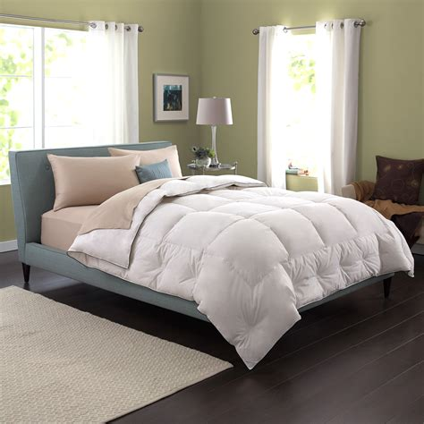 pacific down comforter pacific coast feather comforters 171 greatsheets com