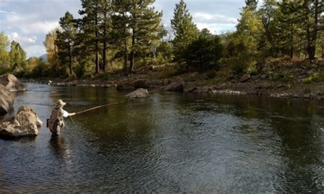 arkansas river nathrop colorado fly winter park colorado fishing guides shops alltrips