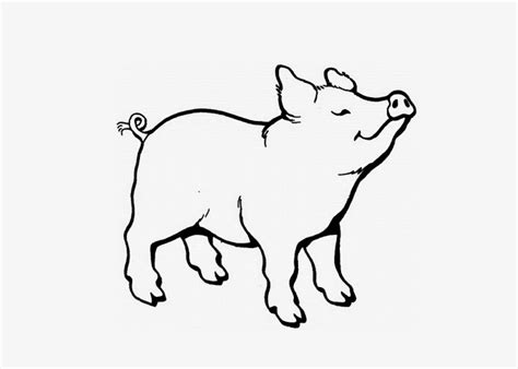 pig coloring pages free coloring pages coloring books kids