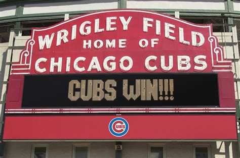 new year for cubs after 108 years the chicago cubs win 2016 world series