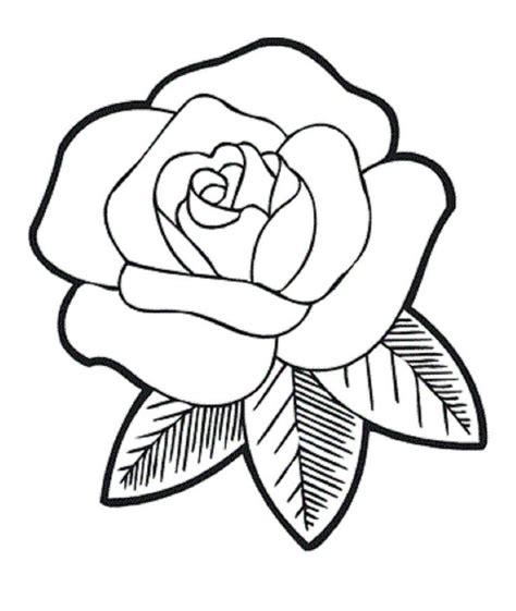 flowers for beginners an coloring book with easy and relaxing coloring pages gift for beginners books the fragrant flower coloring for jpg 837 215 992