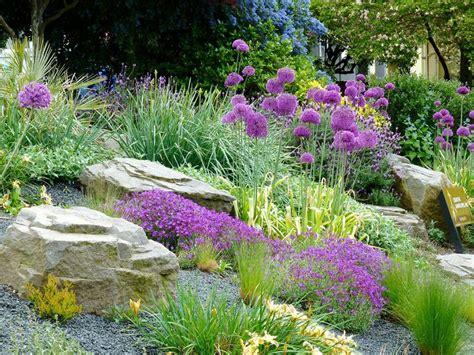 Flowers For Rock Gardens 25 Beautiful Rockery Garden Ideas On Rockery Stones Succulent Rock Garden And