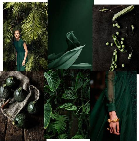what mood is green 1000 id 233 es sur le th 232 me moodboards sur pinterest design