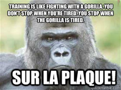 Funny Gorilla Memes - angry gorilla memes quickmeme