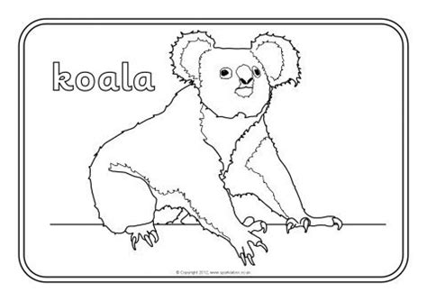 coloring page australian animals colouring sheets ks1 the art jinni