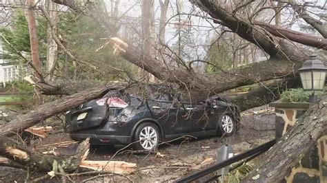 car with tree image martin luther king drive reopens after flooding 6abc