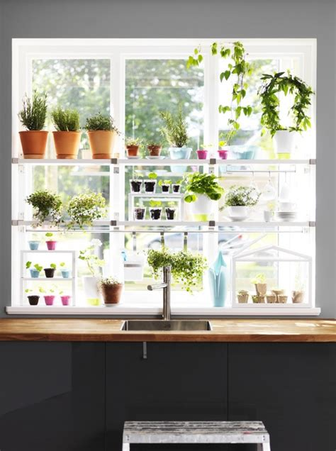 hanging window garden current obsessions ikea hacks for under 50 gardenista