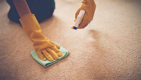 teppich entfernen tipps teppich reinigen 12 tipps haushaltstipps net
