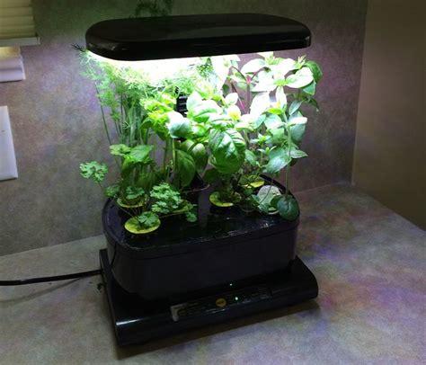 hydroponic indoor herb garden best 25 hydroponics kits ideas on pinterest indoor grow