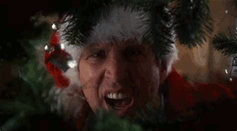what is the gift in christmas vacation vacation gif find on giphy