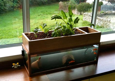 decorate your apartment aquaponic system decorate room design for your home