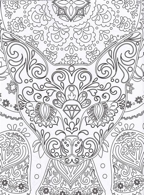 Magazine Coloriage Zen N 176 1 Coloriage Chat Adult Zen Coloring Pages