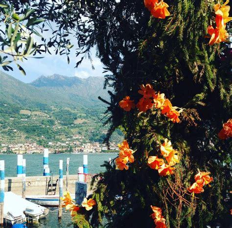 festa dei fiori monte isola duecentomila fiori invadono monte isola le foto pi 249