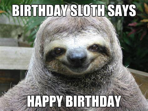Fitness Sloth Meme - inappropriate sloth meme memes