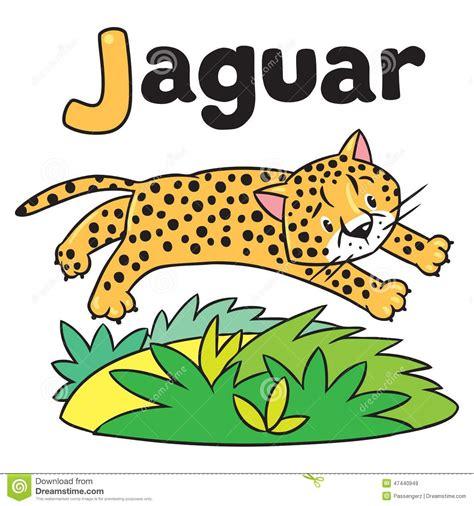 imagenes de jaguar para iluminar peque 241 o guepardo o jaguar para abc alfabeto j stock de