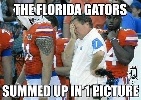 Florida Gator Memes - 789 best florida state seminoles images on pinterest