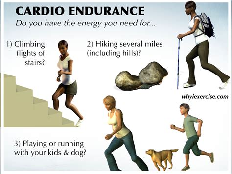 Run Stairs To Build Strength And Endurance by Definition Of Physical Fitness Measure Your Strength