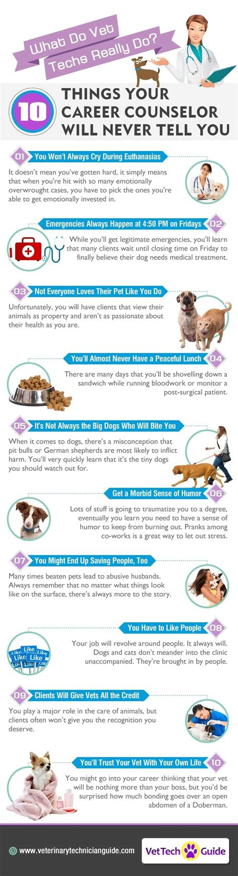 25 best ideas about veterinary medicine on