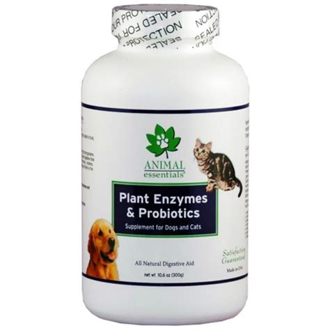 probiotics for dogs plant enzyme probiotics powder for dogs cats 3 5 oz 9 14ea from animal