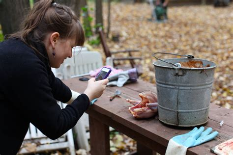 backyard bites backyard bites 28 images backyard bite smoke oil
