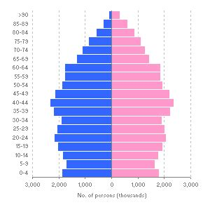 How To Make A Population Pyramid On Paper - population pyramid worksheet worksheets reviewrevitol
