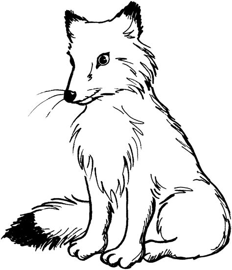 Fox Clipart Black And White fox png clipart animals clip downloadclipart org