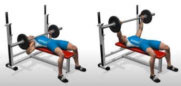 bench press flat barbell bench press bodybuilding wizard
