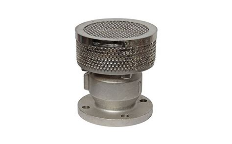 Foot Valve Stainles 302s6 foot valves pvc foot valves flomatic corp