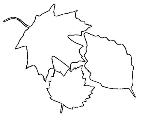 leaf collage coloring page fall leaf coloring pages for school projects car trips